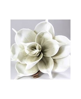 Kwiat Grey White