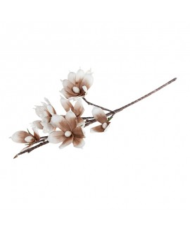 Kwiat brązowo biały