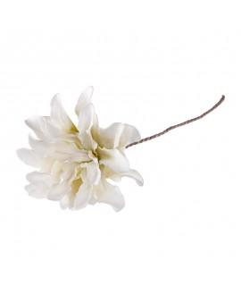 Kwiat Biały